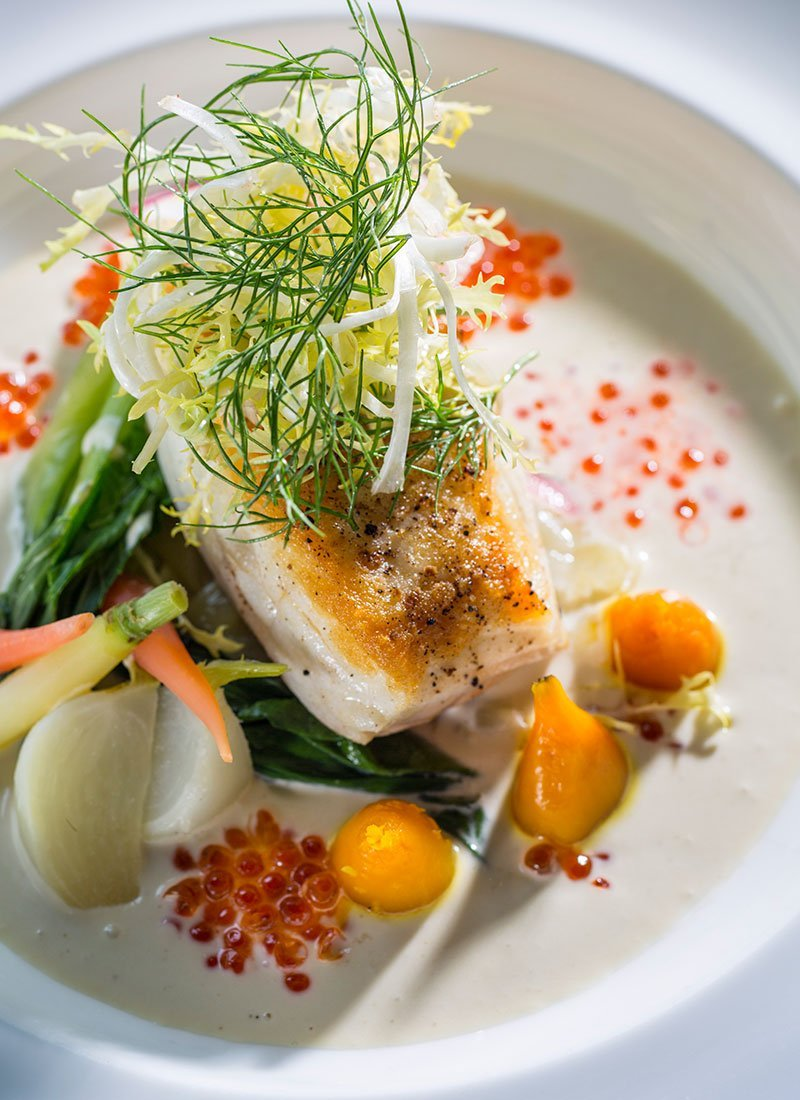 Overhead view of halibut on plate