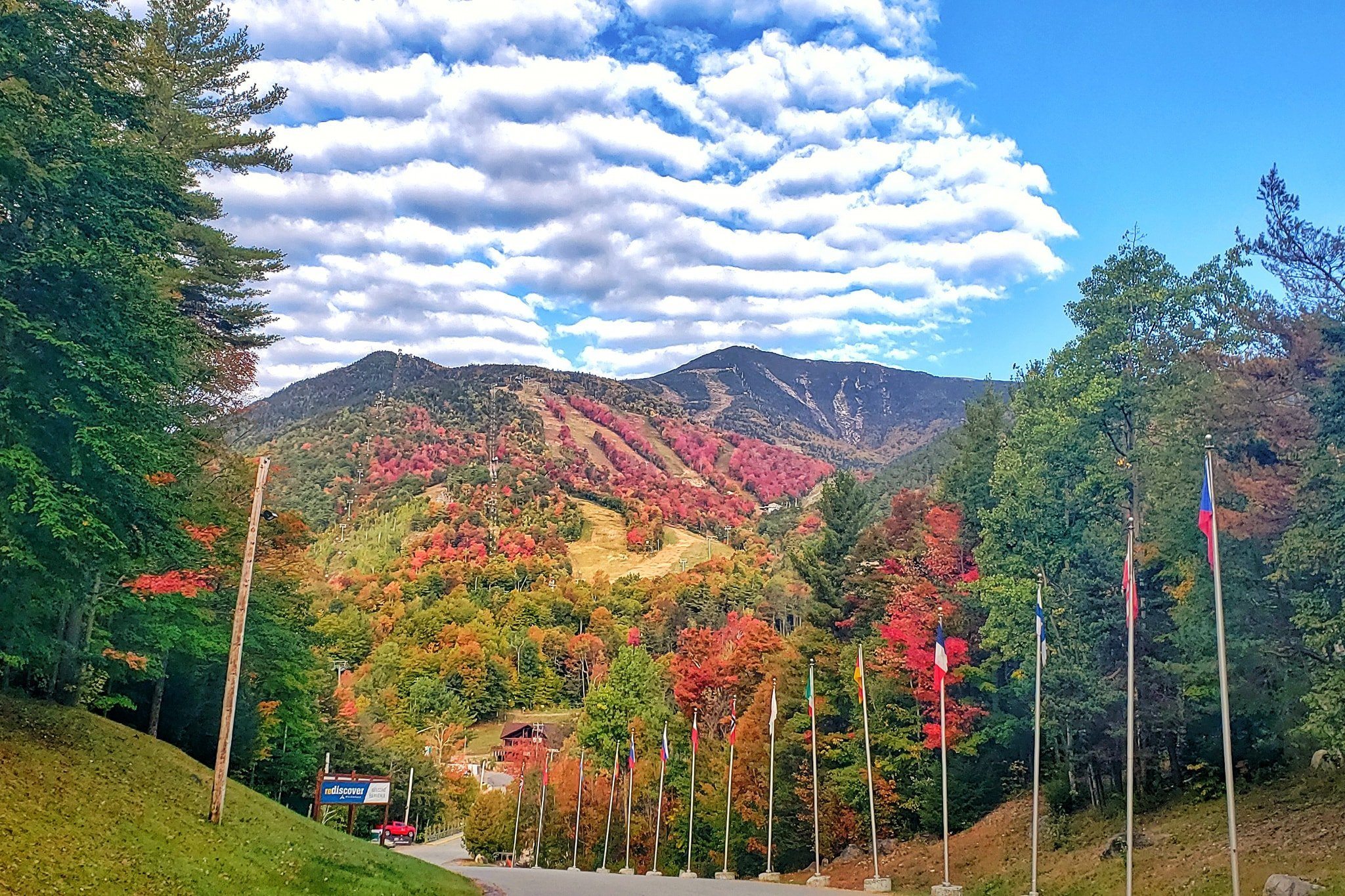 View of mountain from road where trees are all the colors of fall.