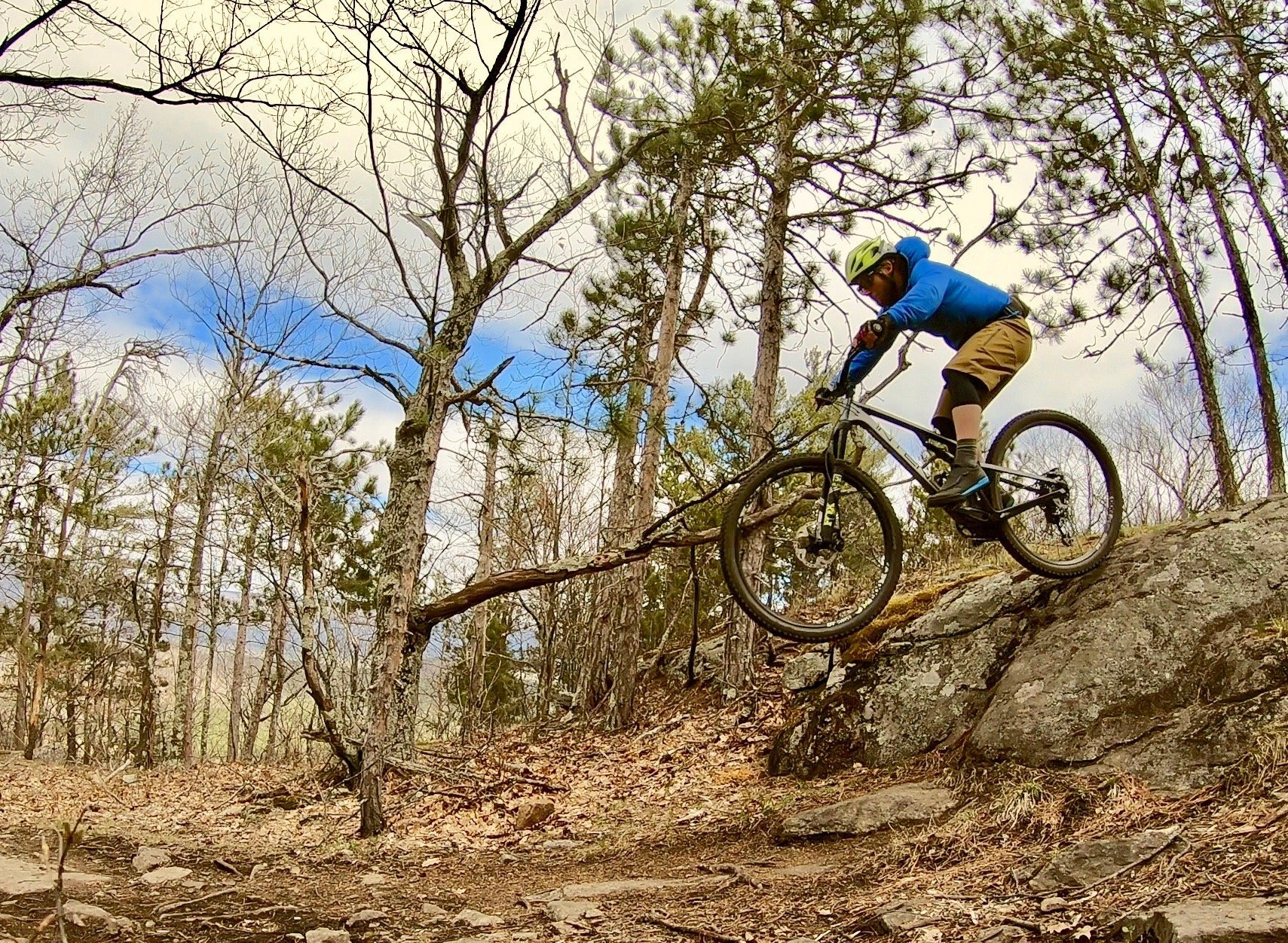 A mountain biker jumping off a rock surrounded by sparse trees