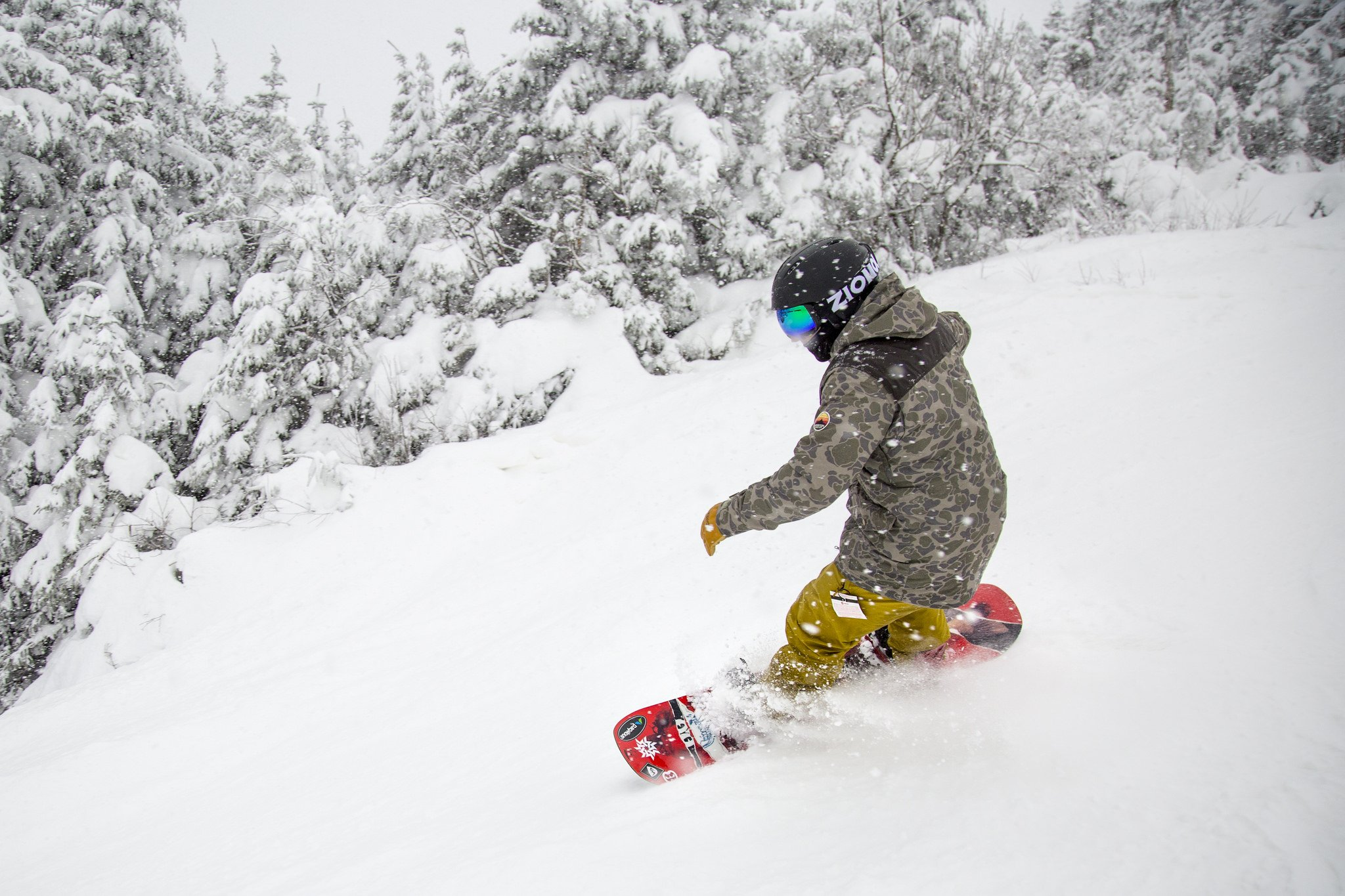 A snowboarder approaching a slope surrounded by snowy trees at Whiteface Mountain