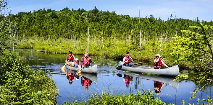 Canoeists paddle on a river